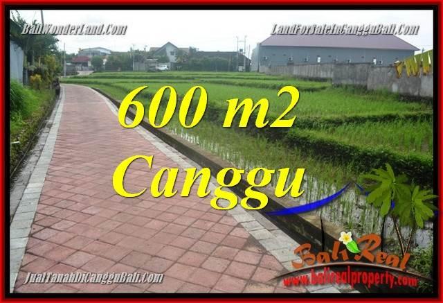 TANAH DIJUAL di CANGGU BALI 600 m2  View sawah, lingkungan villa