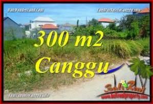 JUAL TANAH di CANGGU 300 m2 VIEW SAWAH, LINGKUNGAN VILLA