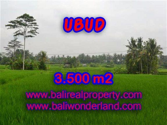 Investasi Properti di Bali - Murah ! Tanah di Ubud Bali Dijual TJUB361