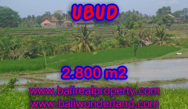 Jual tanah di Ubud Bali 28 Are di Dekat sentral Ubud