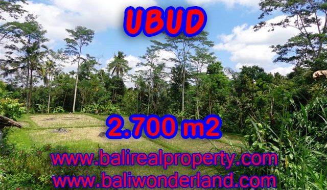 Tanah dijual di Ubud Bali 2.700 m2 view sawah dan hutan di Ubud Tampak Siring