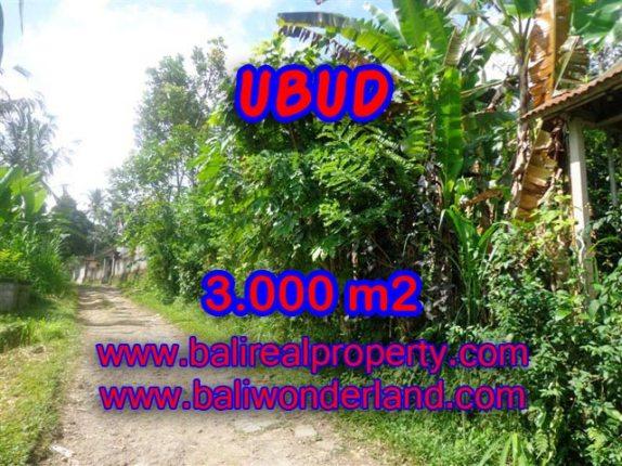 Tanah di Ubud dijual 3.000 m2 view tebing di Ubud Payangan