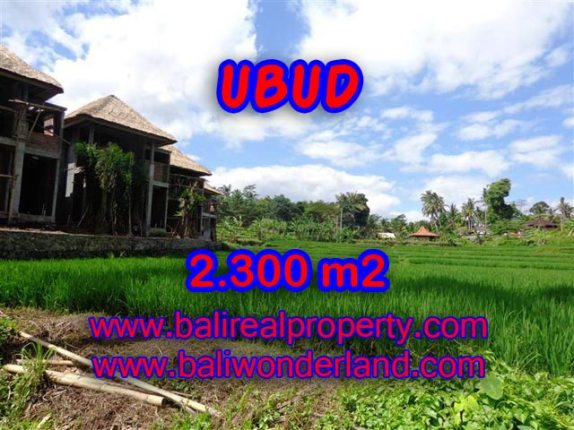 Tanah di Bali dijual murah 2.300 m2 di Dekat Ubud Center