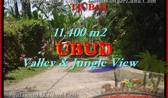 TANAH MURAH di UBUD 114 Are di Ubud Payangan