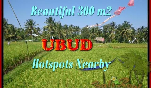 DIJUAL TANAH MURAH di UBUD BALI 300 m2 di Sentral Ubud