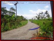 JUAL TANAH di UBUD Untuk INVESTASI TJUB451
