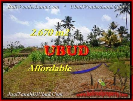 TANAH DIJUAL di UBUD BALI 2.670 m2 View kebun dan pangkung