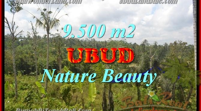JUAL MURAH TANAH di UBUD 9,500 m2 View hutan, sungai dan sawah