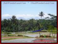 TANAH di UBUD BALI DIJUAL 8.000 m2 View Sawah, Sungai, Gunung