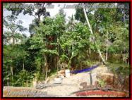 JUAL TANAH MURAH di UBUD BALI 6.5 Are View sawah dan pangkung