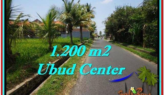 TANAH DIJUAL MURAH di UBUD 1,200 m2 di Sentral Ubud