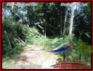 JUAL TANAH MURAH di UBUD 20 Are View Tebing dan sungai