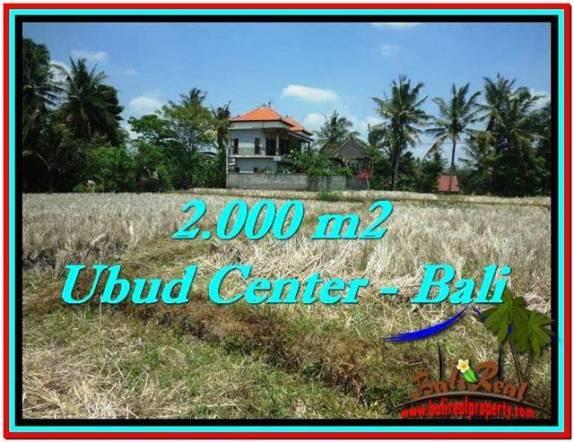 JUAL TANAH MURAH di UBUD BALI 2,000 m2  View Sawah, Link. Villa