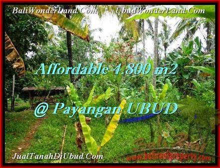 TANAH MURAH di UBUD BALI 4,800 m2 di Ubud Payangan