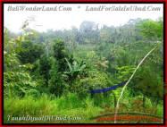 JUAL TANAH MURAH di UBUD BALI 16,500 m2 View Tebing dan sungai