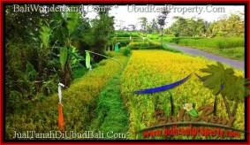 TANAH MURAH di UBUD BALI 700 m2 di Ubud Tegalalang