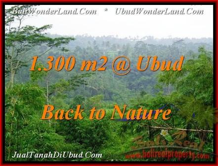 TANAH MURAH di UBUD BALI 1,300 m2 View Tebing dan Kebun