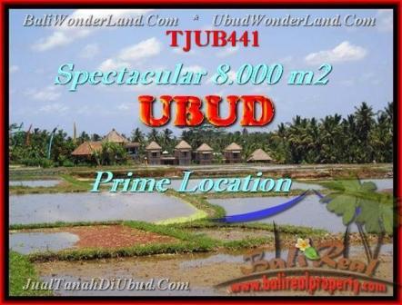 TANAH di UBUD BALI DIJUAL Untuk INVESTASI TJUB441