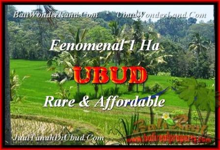JUAL TANAH di UBUD 10.000 m2 di Ubud Pejeng