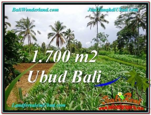 JUAL TANAH di UBUD 1,700 m2  View kebun dan sawah