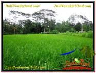TANAH MURAH DIJUAL di UBUD 28 Are di Ubud Tampak Siring