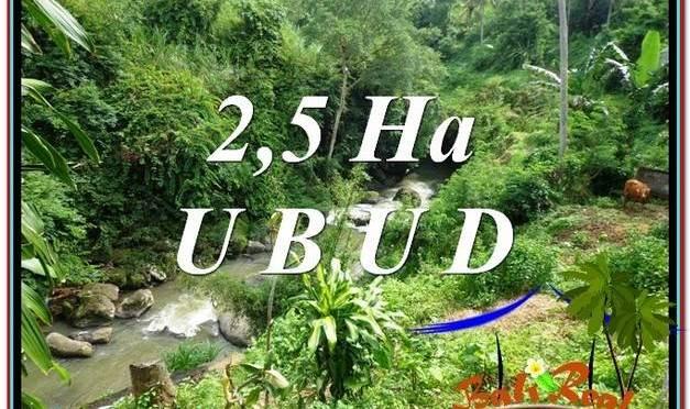 TANAH di UBUD BALI DIJUAL MURAH TJUB579