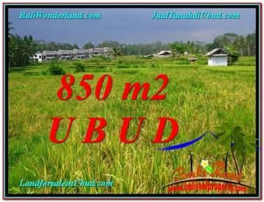DIJUAL MURAH TANAH di UBUD BALI 850 m2 di Ubud Pejeng