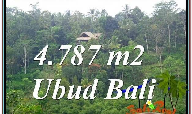 TANAH DIJUAL MURAH di UBUD 4,787 m2 di Ubud Tampak Siring