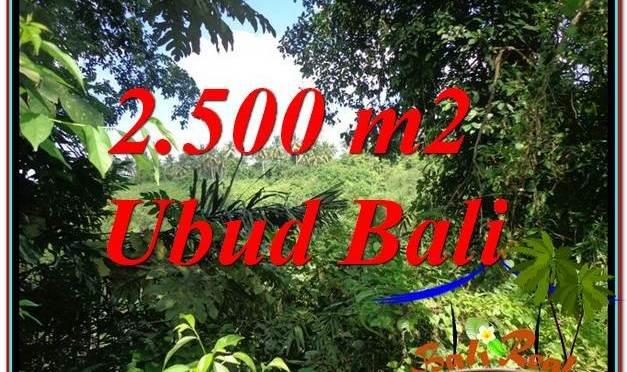 TANAH di UBUD BALI DIJUAL MURAH Untuk INVESTASI TJUB605