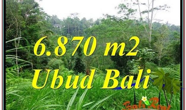 JUAL TANAH di UBUD BALI 69 Are View Kebun, Sungai dan Tebing