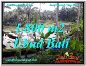 TANAH MURAH di UBUD BALI 1,800 m2  View Sawah