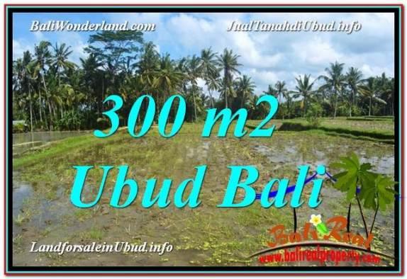 JUAL TANAH MURAH di UBUD BALI 300 m2  View Sawah lingkungan Villa