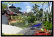 TANAH MURAH JUAL UBUD 2,000 m2 View Sungai Kecil lingkungan Villa