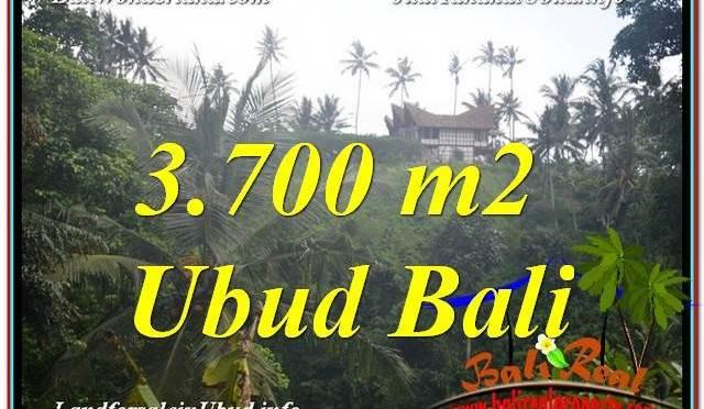 JUAL TANAH MURAH di UBUD BALI 37 Are View Tebing dan Sungai, Link. Villa