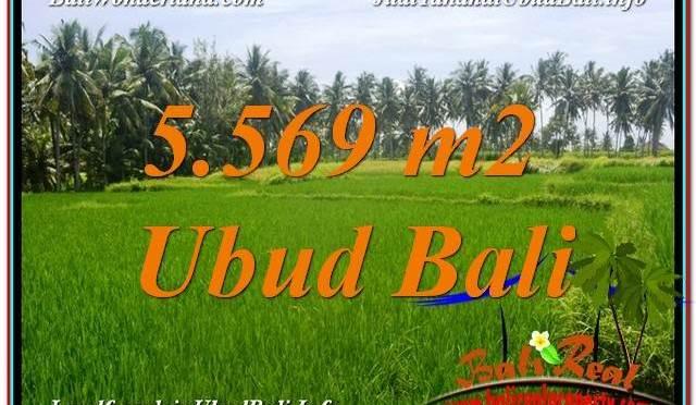 INVESTASI PROPERTI, DIJUAL TANAH di UBUD BALI TJUB642