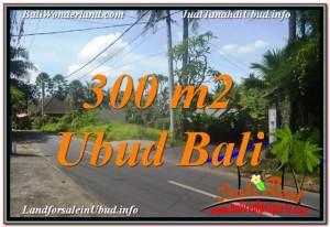 TANAH di UBUD DIJUAL Untuk INVESTASI TJUB646