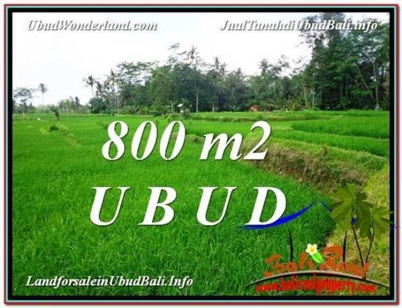 DIJUAL MURAH TANAH di UBUD BALI 800 m2 di Ubud Pejeng