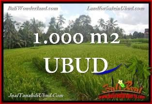 TANAH DIJUAL MURAH di UBUD 1,000 m2 di Ubud Tegalalang