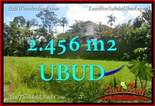 JUAL TANAH di UBUD BALI 2,456 m2  View tebing link Villa