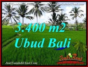TANAH DIJUAL di UBUD BALI Untuk INVESTASI TJUB656