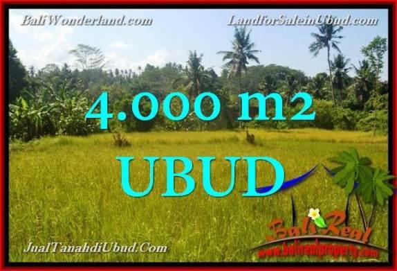 DIJUAL MURAH TANAH di UBUD BALI 4,000 m2 di Ubud Gianyar