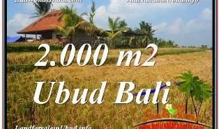 INVESTASI PROPERTI, DIJUAL MURAH TANAH di UBUD BALI TJUB669