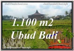 TANAH MURAH di UBUD BALI DIJUAL 1,100 m2 VIEW SAWAH, LINGKUNGAN VILLA