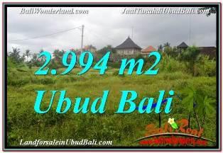 DIJUAL TANAH MURAH di UBUD BALI 2,994 m2 di SENTRAL UBUD