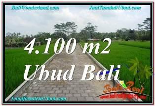 JUAL TANAH di UBUD 4,100 m2  VIEW SUNGAI, LINGKUNGAN VILLA