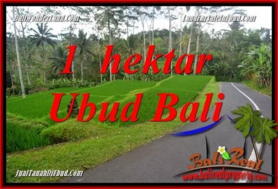 Tanah Murah di Ubud jual 100 Are View Sungai dan Tebing