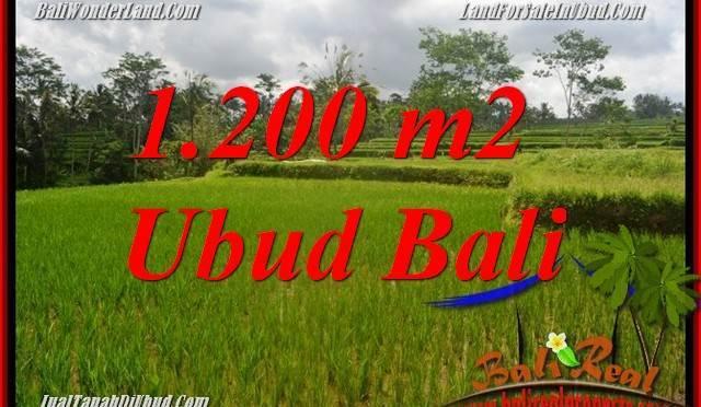 Tanah Murah di Ubud jual 1,200 m2 View sawah, lingkungan Villa