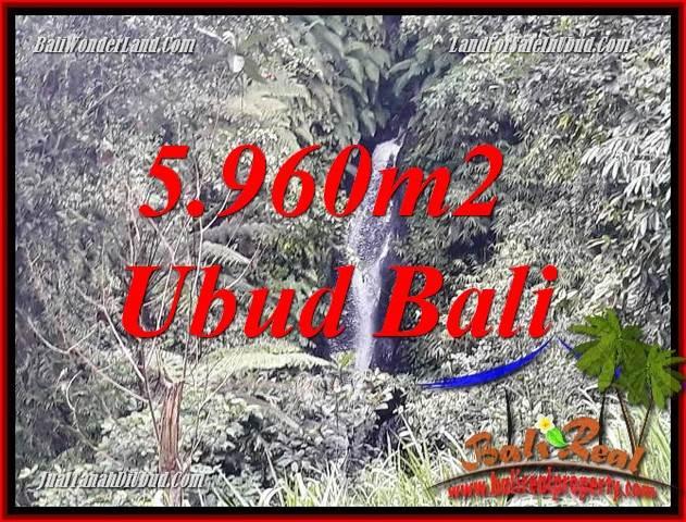 Tanah Dijual di Ubud 5,960 m2  View sawah dan sungai
