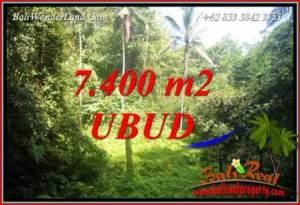 Tanah Murah di Ubud Bali Dijual 77 Are View air terjun