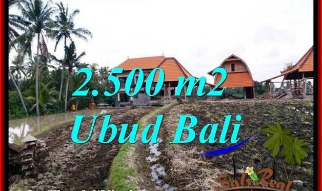 INVESTASI PROPERTI, DIJUAL MURAH TANAH di UBUD TJUB772